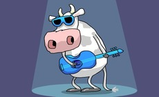 Animation-musicale-avec-une-vache-no-milk-today
