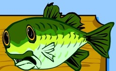 un Poisson chanteur - YouTube